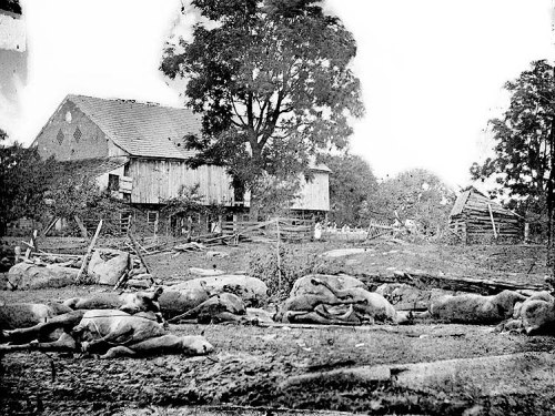 Image of dead horses near the Trostle's barn in Gettysburg. Original image, Library of Congress.