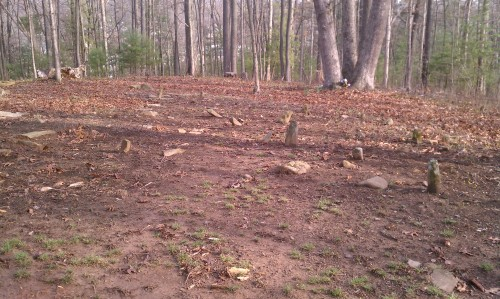 Unmarked graves, African American section, Henry family cemetery, Asheville, NC